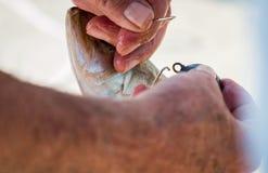 Närbild av händer och fiskeriggen Arkivfoto