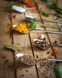 Närbild av kryddor och örter i skedar på träbakgrund royaltyfri bild