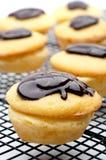 Närbild av muffiner för en Boston kräm- Pie Arkivbilder