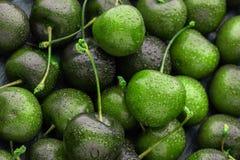 Närbild av mycket mogna körsbär, ovanlig färglimefrukt härligt ljust - grön bakgrund arkivfoto
