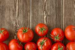 Närbild av nya mogna tomater Royaltyfri Foto