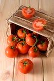 Närbild av nya mogna tomater på träbakgrund Top beskådar Royaltyfria Foton