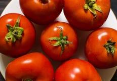 Närbild av nya mogna tomater på wood bakgrund Royaltyfria Foton