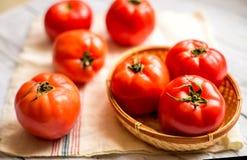 Närbild av nya mogna tomater på wood bakgrund Royaltyfri Fotografi