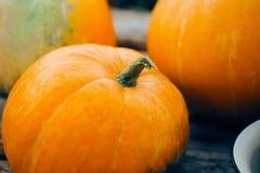 Närbild av orange nya pumpor fotografering för bildbyråer