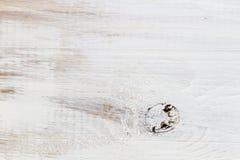 Närbild av plankor med målade fnurror royaltyfri bild