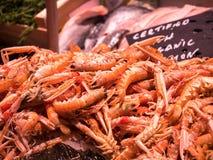 Närbild av räkor på en fiskmarknad royaltyfria foton