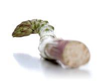 Närbild av sparris på vit bakgrund Arkivbilder