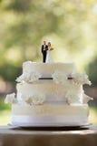Närbild av statyettpar på bröllopstårtan Fotografering för Bildbyråer