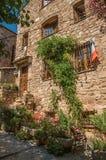 Närbild av stenhusfasaden med vindan i en gränd på den Les Arcs-sur-Argens Arkivfoton