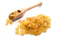 Närbild av torkat rått litet - storleksanpassade guld- russin i en träsp royaltyfri bild