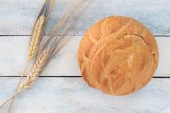 Närbild av traditionellt bröd Royaltyfri Fotografi