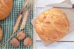 Närbild av traditionellt bröd Royaltyfria Bilder