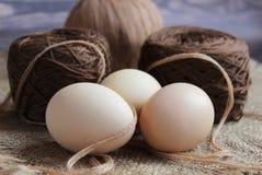 Närbild av tre nya ägg på bakgrunden av ett garnnystan för att sticka royaltyfri fotografi