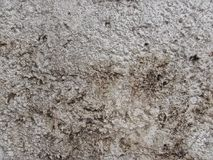Närbild av väggtexturdetaljer Royaltyfri Fotografi