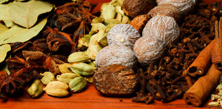 Närbild av variation av kryddor Arkivfoto