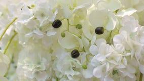 Närbild av vita orkidér i bröllopgarnering Gifta sig bågen