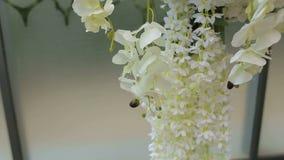 Närbild av vita orkidér i bröllopgarnering Gifta sig som är ärke- med vita blommor