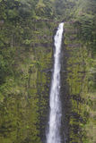 Närbild av Waimoku Falls, Maui, Hawaii Royaltyfria Foton
