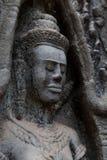 Närbild Devata på den forntida templet i Angkor område royaltyfri bild