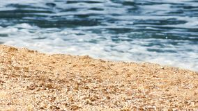 Närbild en havsstrand arkivfilmer