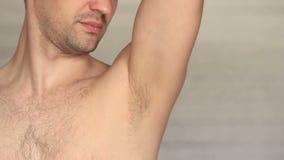 Närbild för armhåla för man` s hårig lager videofilmer