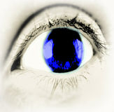 Närbild för blått öga Royaltyfri Foto