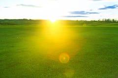 Närbild för grönt gräs i solnedgång Sommar- eller våräng Sommar- eller vårängnatur Arkivbild