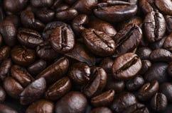 Närbild för kaffebönor Arkivfoto