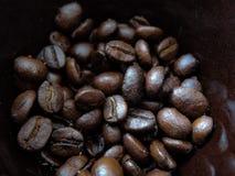 Närbild för kaffebönor i brun kopp macrophotography arkivfoton