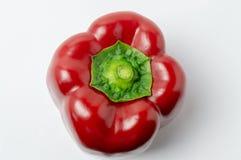 Närbild för organiska vitaminer för röd färg för paprika naturlig royaltyfri bild