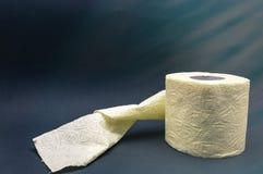 Närbild för wc för rulle för toalettpapper grå gul arkivbild