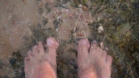 Närbild manlig fot i klart anseende för havsvatten på grunda havskiselstenar klart havsvatten, i grunt vatten Längst ner arkivfilmer