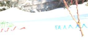 Närbild på snön är mång--färgade glitter och konfettier ekologiskt trä för julgarneringar lager videofilmer