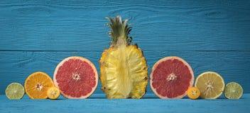 Närbild skivad ananas som omges av citruns Royaltyfri Fotografi