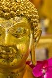 Närbild till den guld- buddha statyn Royaltyfria Bilder