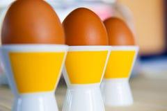 Närbild tre bruna ägg i äggkopp Arkivfoton