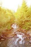 Närbildbild av en liten lös vattenfall i form av korta strömmar av vatten mellan bergstenar Arkivfoto