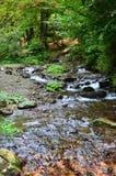Närbildbild av en liten lös vattenfall i form av korta strömmar av vatten mellan bergstenar Arkivbild