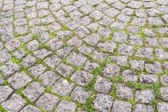Närbilddel av trottoaren som stenläggas radial med fyrkantiga granitstenar med gräs in - between royaltyfri fotografi
