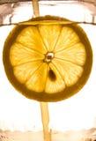 Närbild av citronskivan Arkivbilder