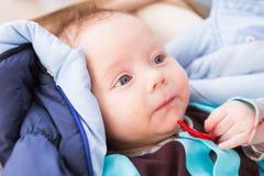 Närbilden av den förtjusande caucasianen behandla som ett barn Ståenden av tre gamla månader behandla som ett barn pojken Fotografering för Bildbyråer
