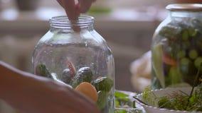 Närbilden av en kvinna som lägger i en Glass bank med gurkor, skivade morötter och vit peppar för att laga mat lager videofilmer