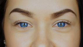 Närbilden av en ` s för ung kvinna synar i blåa kontaktlinser lager videofilmer