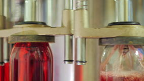 Närbilden av flaskor av vin hälls arkivfilmer