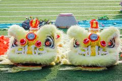 Närbilden av gula Dragon Head, drakedans är en form av den traditionella dansen och kapaciteten i kinesisk kultur fotografering för bildbyråer