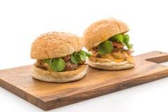 Närbilden av hemmet gjorde den isolerade nya smakliga hamburgaren på vit backg Arkivfoton