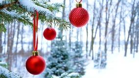 Närbilden av röda julstruntsaker klumpa ihop sig att hänga på snö som täckas för att sörja trädfilialer utanför arkivfoto
