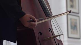 Närbilden av rader av en violoncell som vibrerar som cellisten, drar hennes pilbåge stock video