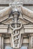 Närbilden av två ormar virvlade runt runt om en bevingad taktpinne Royaltyfria Bilder
